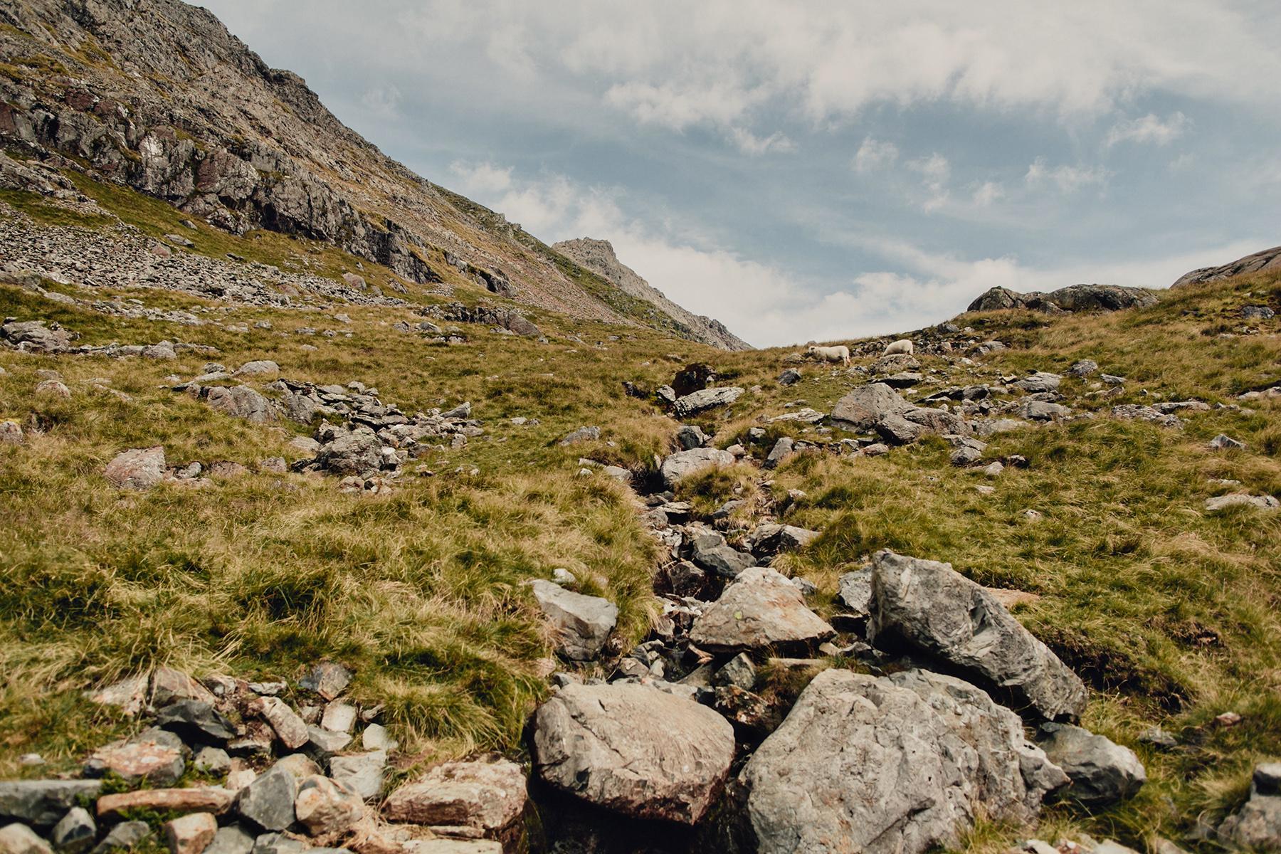 Mt-Snowdon-Hike-Photos-From-Peny-Pass-00081.jpg