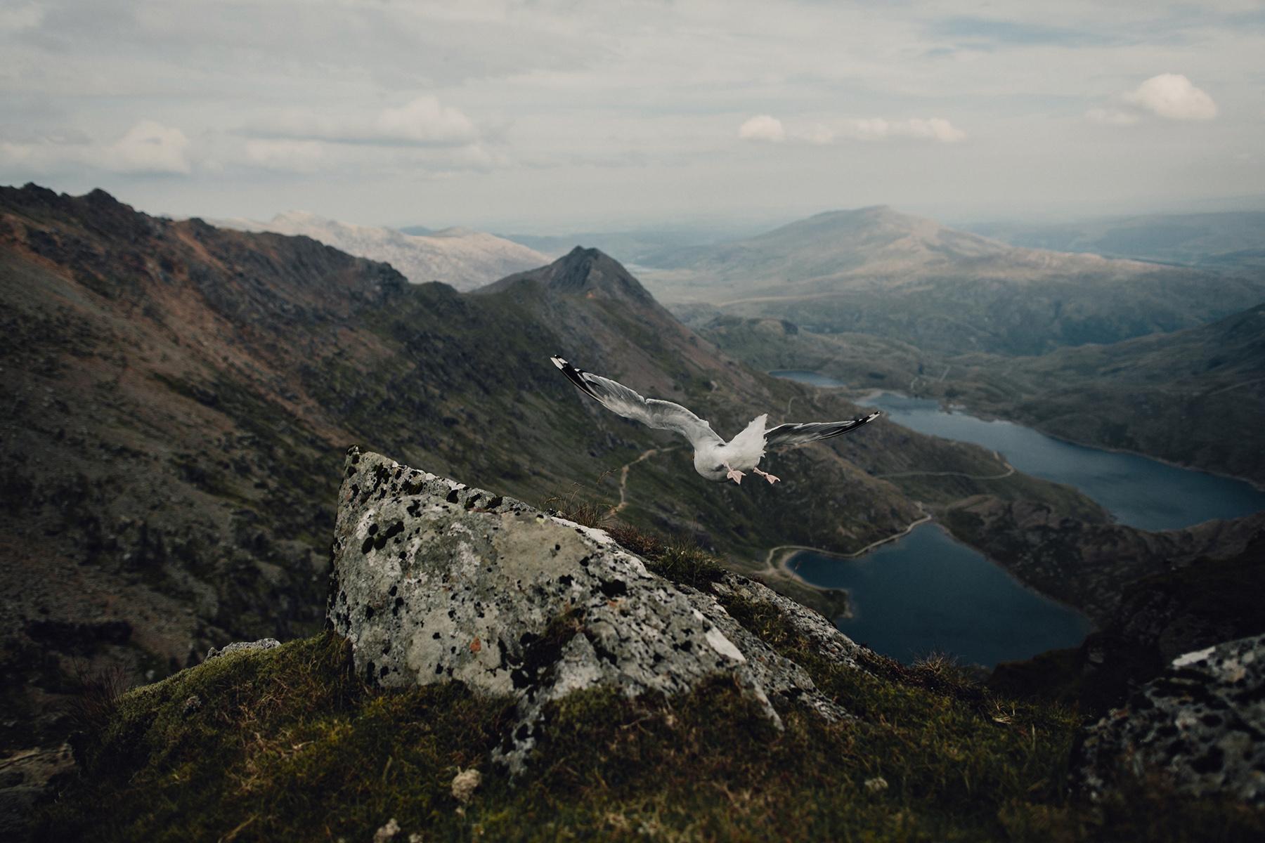 Mt-Snowdon-Hike-Photos-From-Peny-Pass-00151.jpg