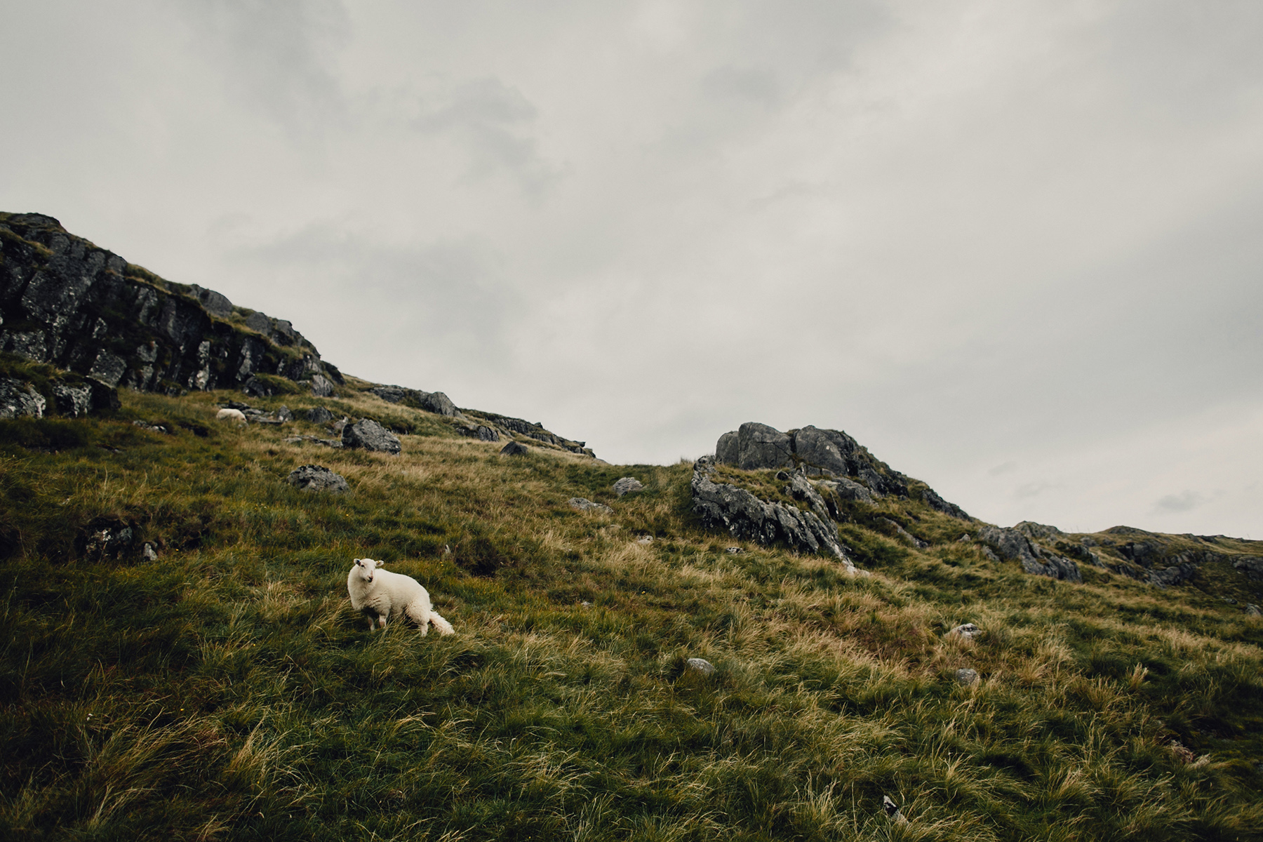 Mt-Snowdon-Hike-Photos-From-Peny-Pass-00211.jpg