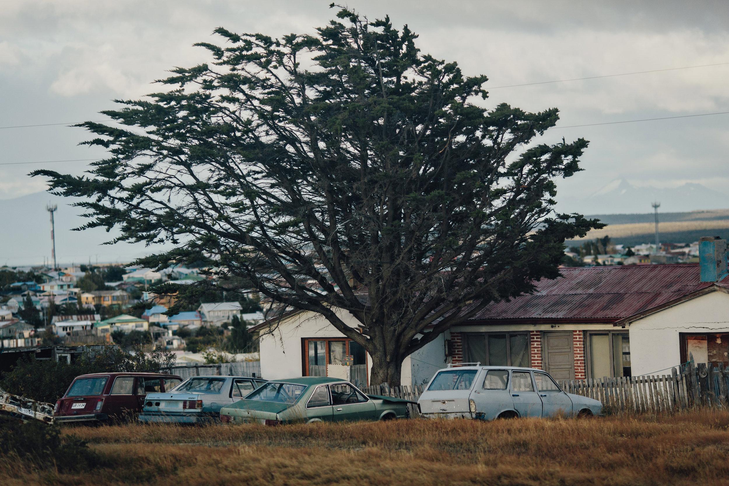 Puerto Natalas-27.jpg