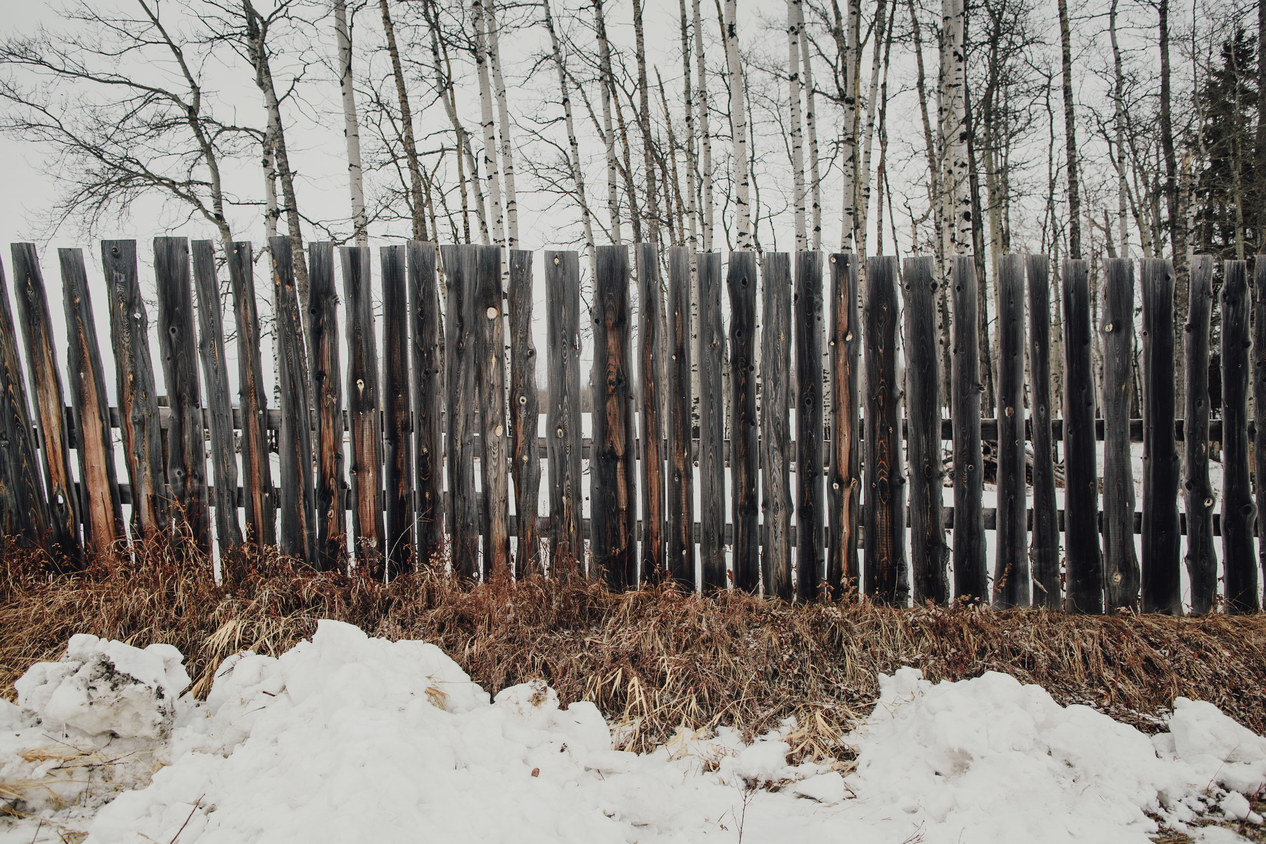 Vacations-of-the-Brave-Alberta-0145.JPG