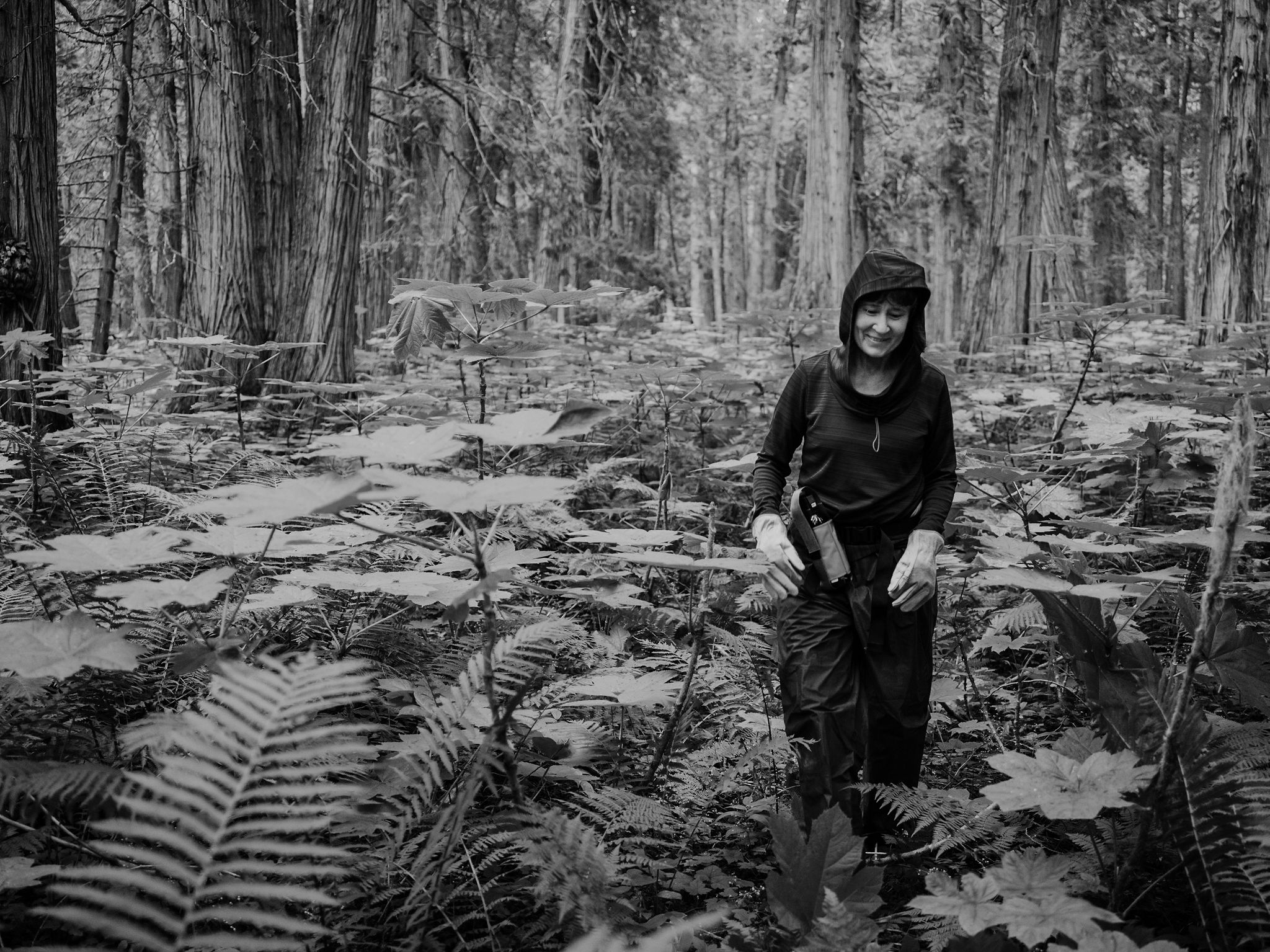 Sarah Cox Bushwhacking her way through Devil's Club as tall as her! Anything to get the story!