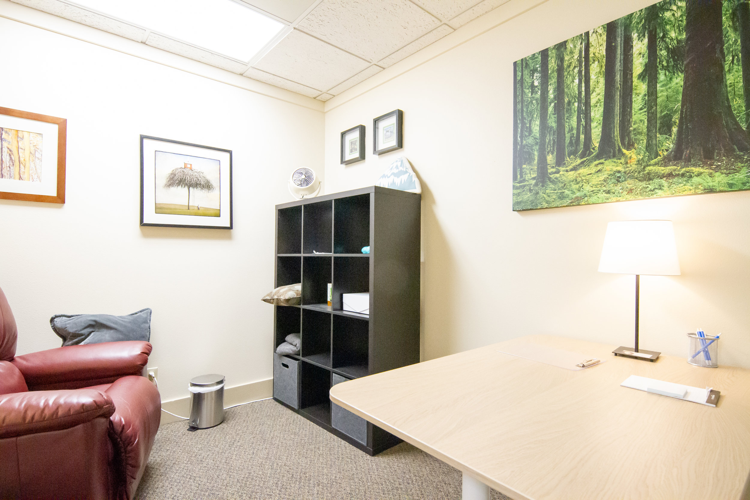 """The """"Forest"""" hypnosis office."""
