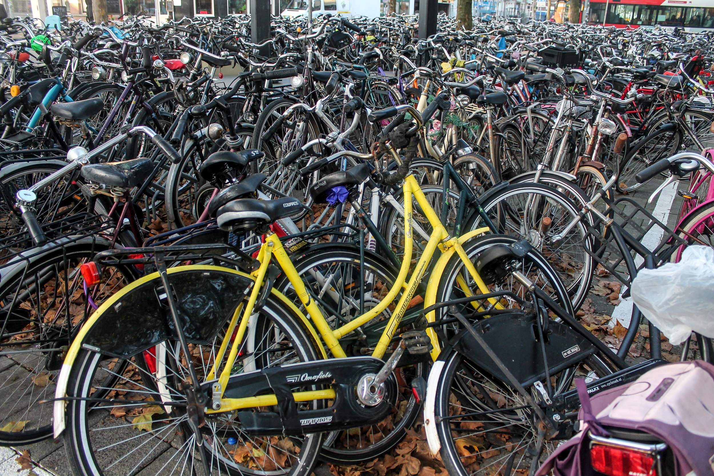 Bicycles in The Netherlands.