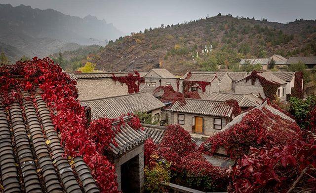 Gubei in the autumn. . . . . . . . . . . . . . #travelchina #traveltheworld #backpacking #wanderlust #theglobeisbeautiful #travelphoto #travelphotography #travelblogger #landscapephotography #canon #canon5diii #canonphotography #natgeo #nationalgeographic  #photooftheday #travelasia #chinatravel #instachina #instatraveling #instatravel #travelbeijing #gubei #gubeiwatertown #beautifuldestination #autumnvibes🍁  #autumncolors🍁  #getoutstayout  #earthfocus