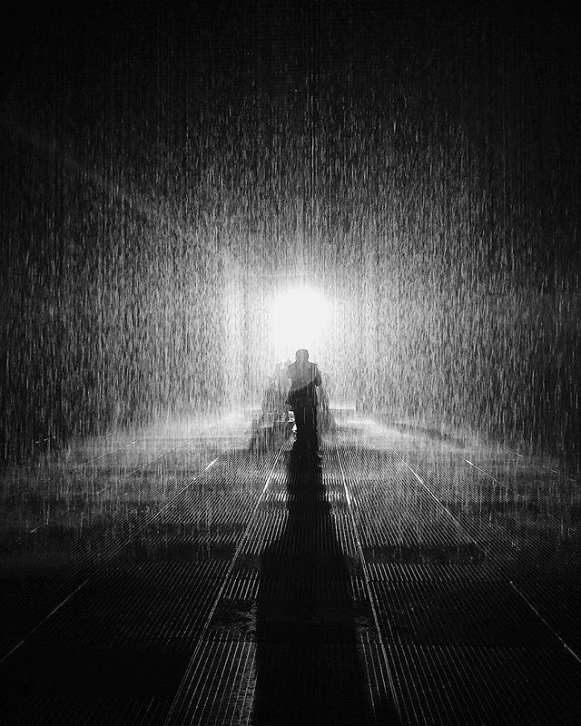 Rain Room @yuzmuseum #immersive #experience #no #☂️ #robotics
