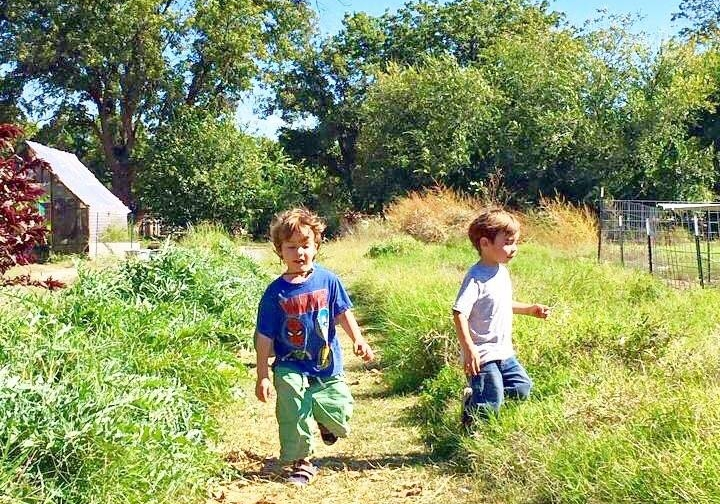 taylor_hood_farms_garden_kids.jpg