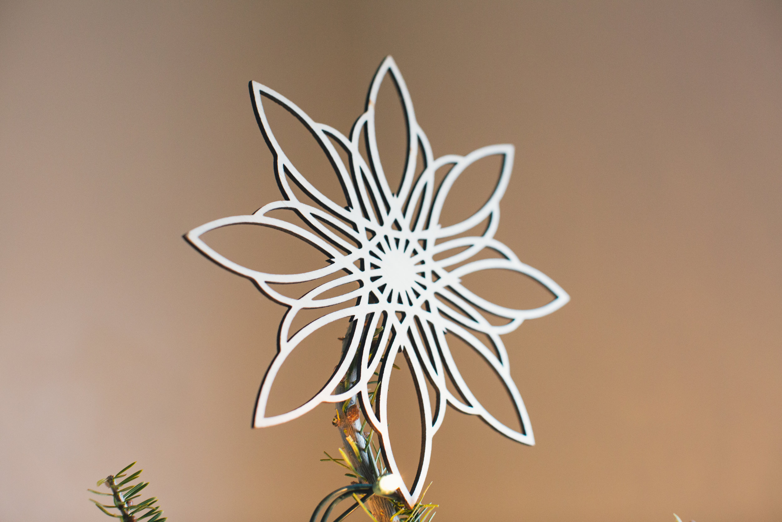 Ornaments & Toppers-0787.jpg