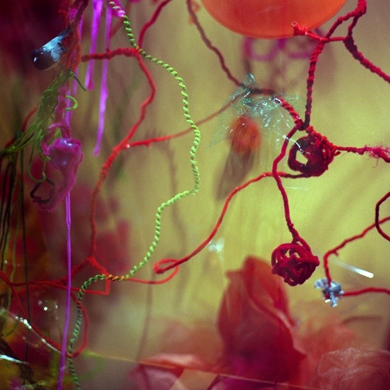 BERGDORF WINDOW SERIES  , 2012   Red Balls Against Green  22 x 22 inches Giclee Print