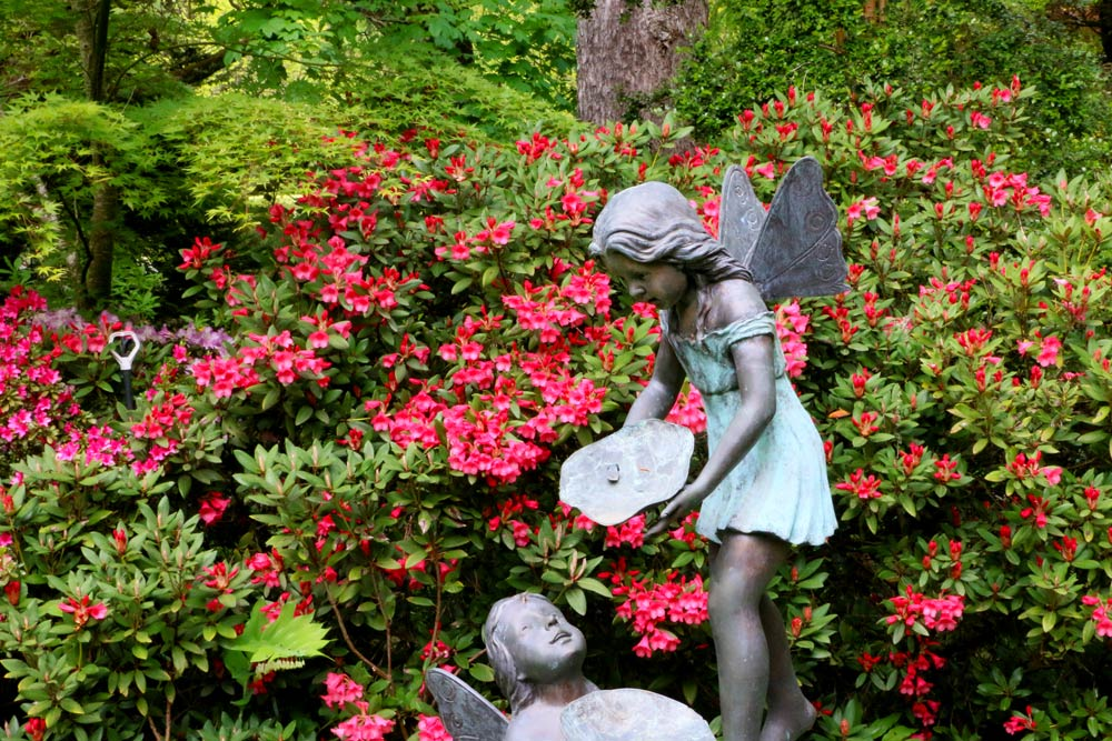 3344-fairy-with-azaleas-1000-45.jpg