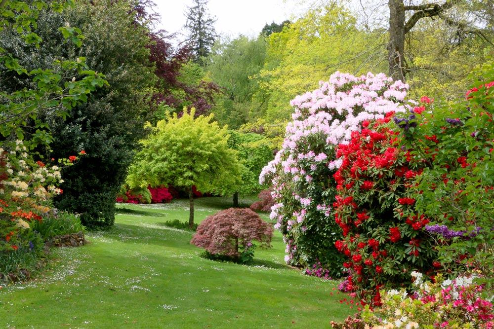 3353-rhodos-white-red-with-garden-1000.jpg