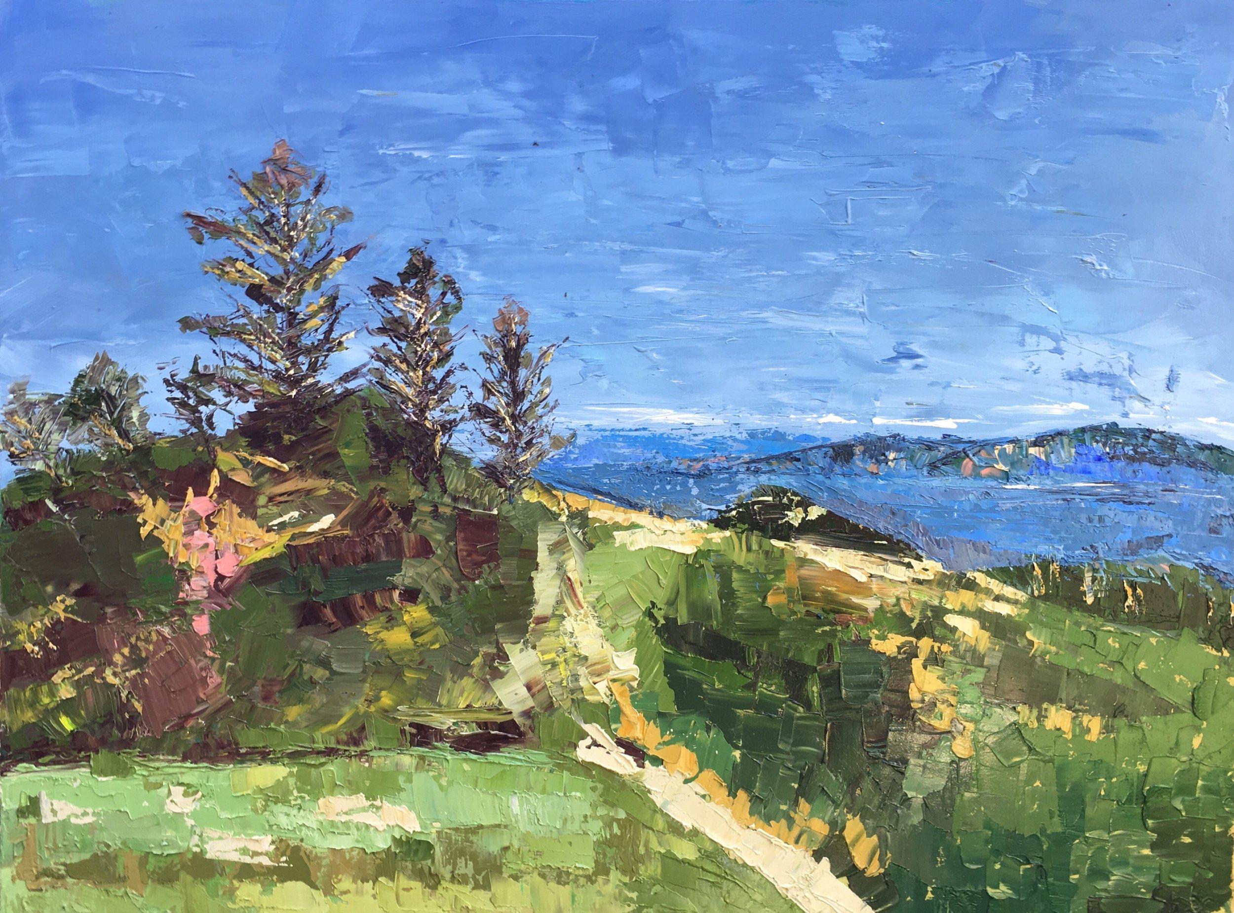 Artwork Title:  Mount Tamalpais  Artist:  FAN LU (Oil on Canvas. 30x40 inch. 2018)