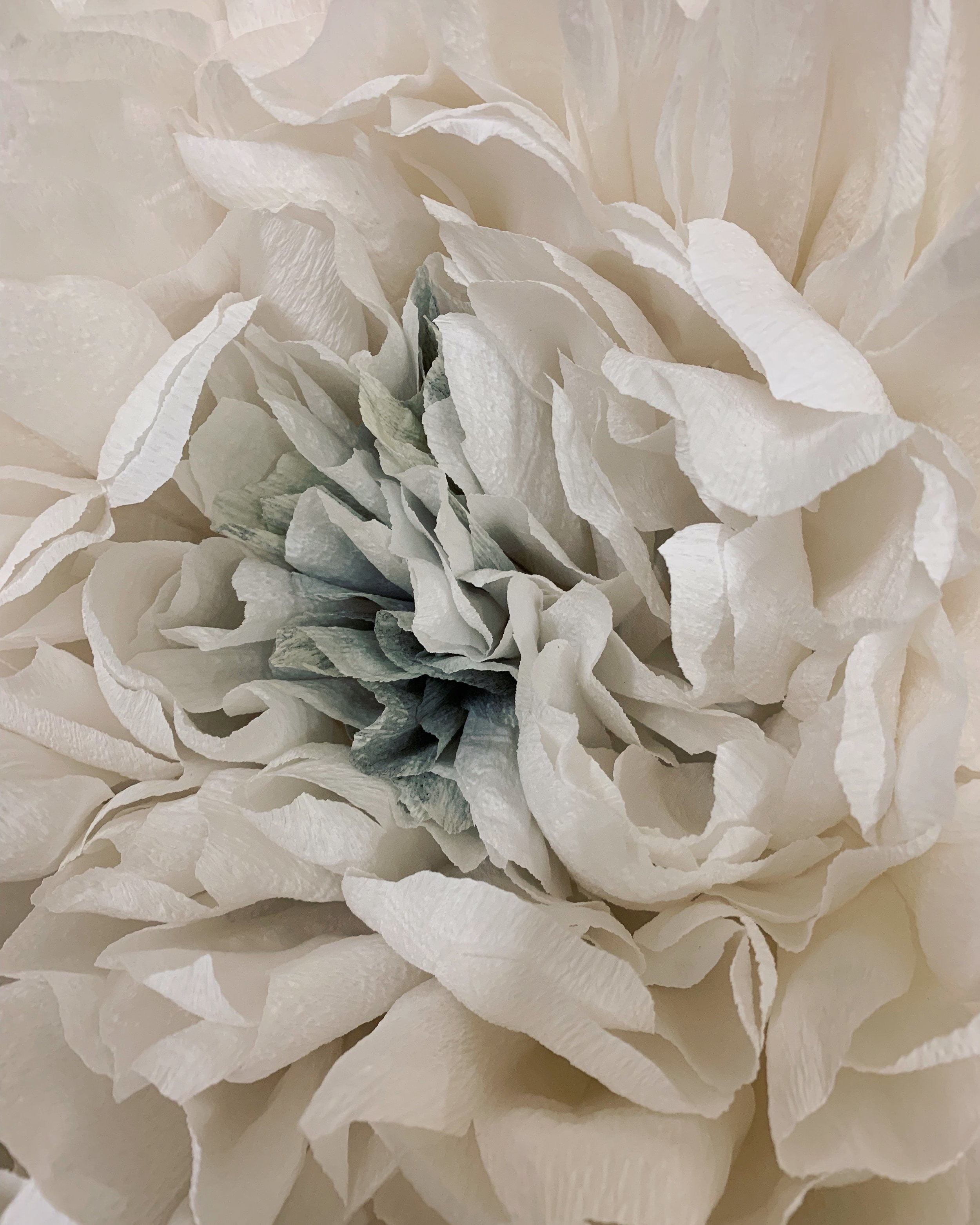 Paper Peony Detail
