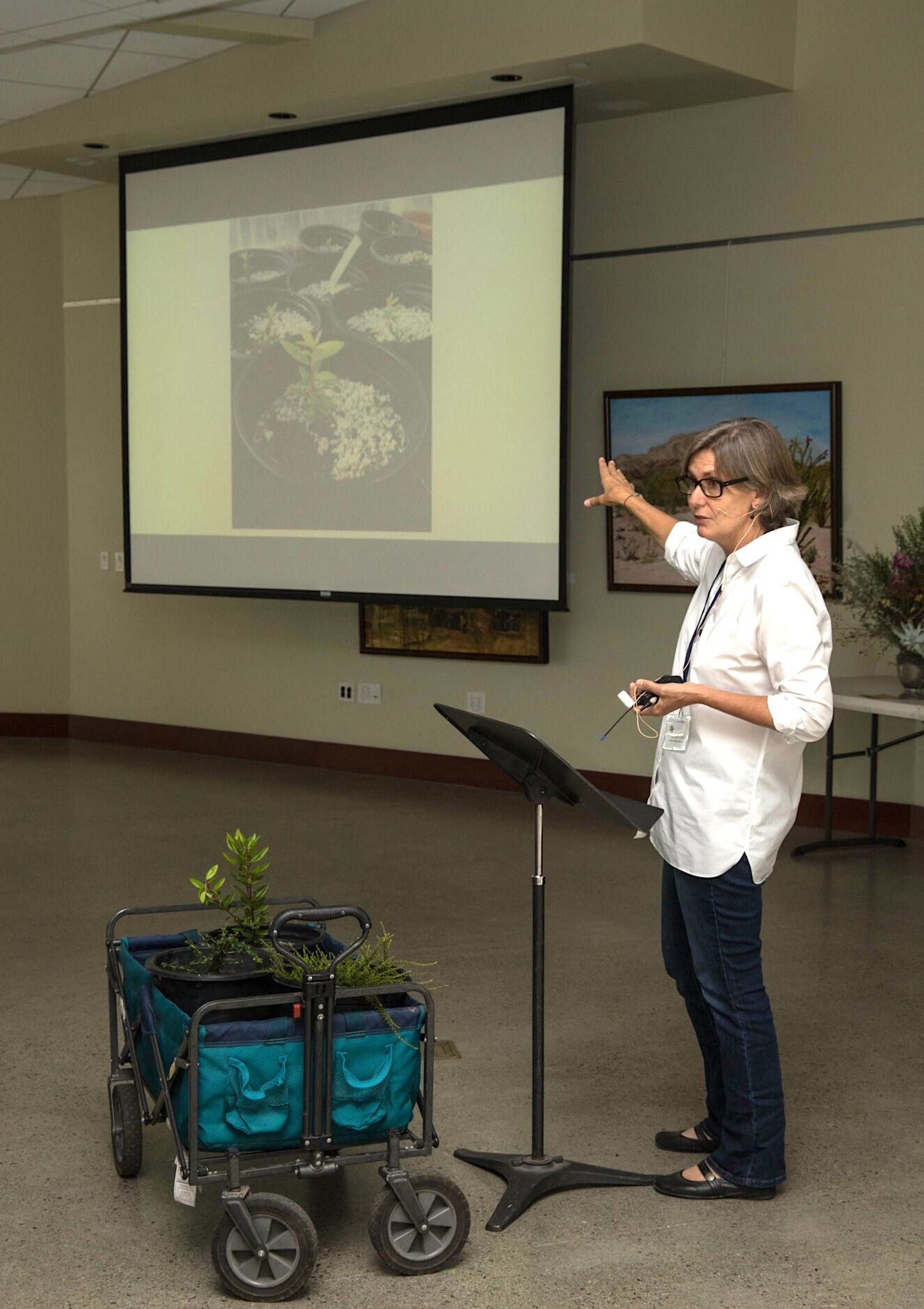 "Lorraine Kelley presents ""Growing Native plants and Wildflowers from Seed"""