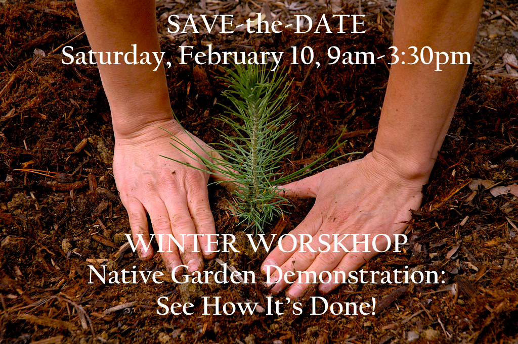 Winter Workshop Save the Date Final.jpg