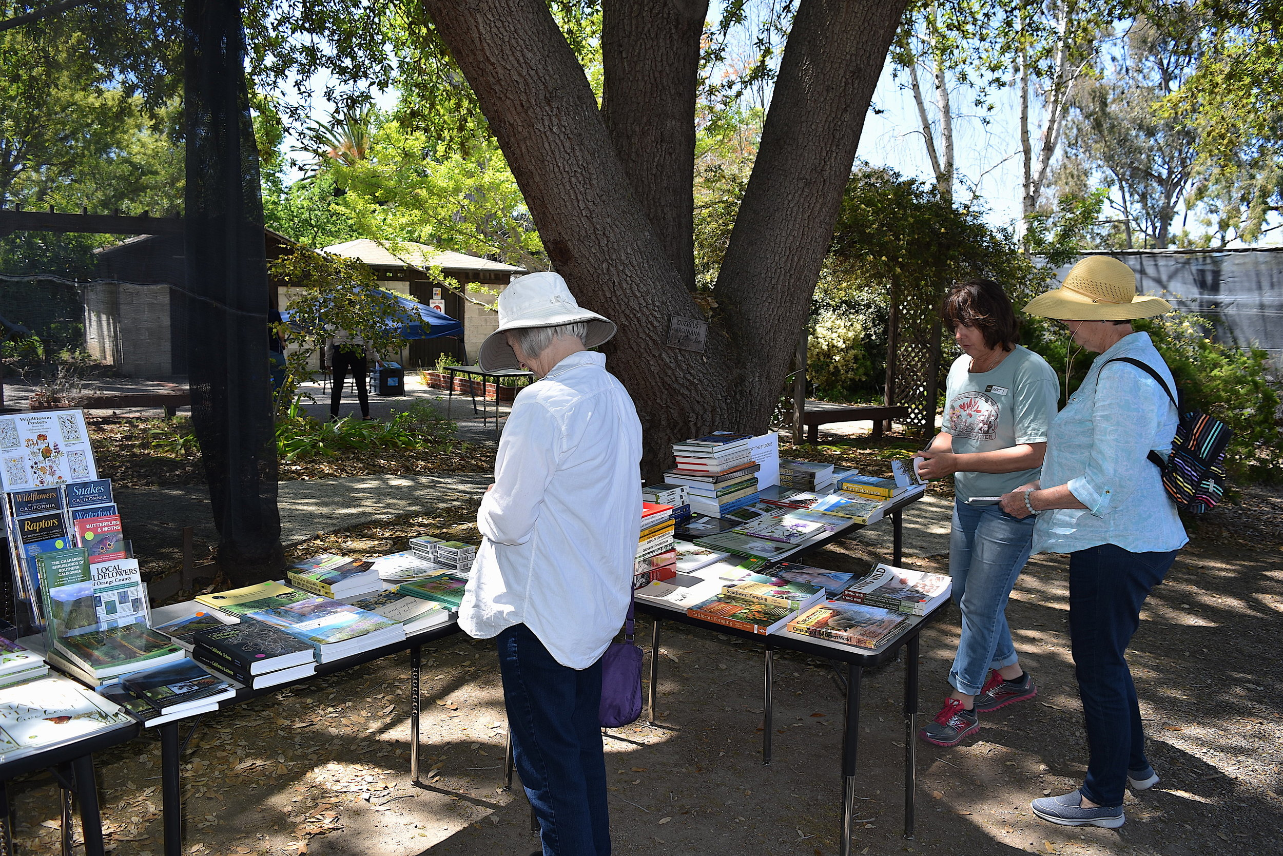 Book Tables 2.JPG