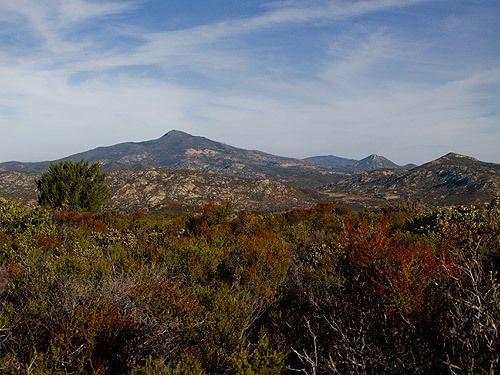 Guatay Mountain.jpg