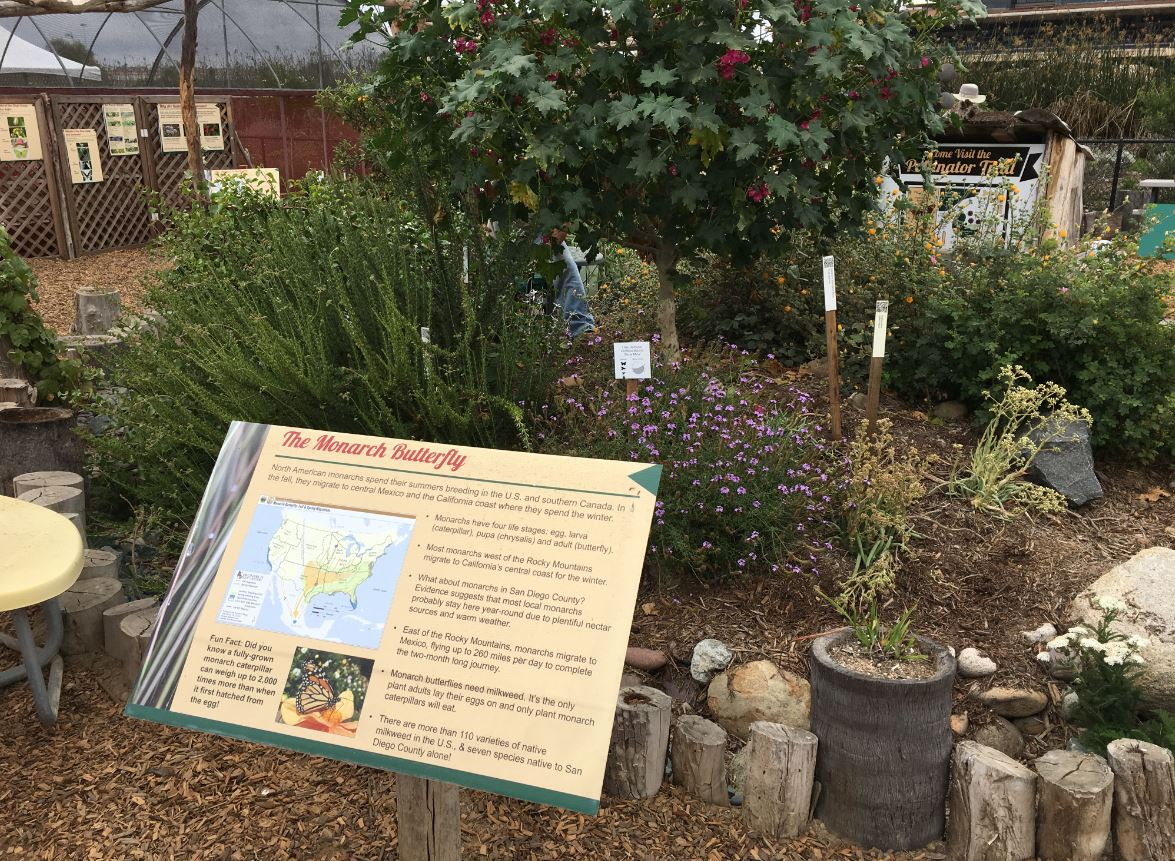 Pollinator Exhibit by USFWS 3.jpg