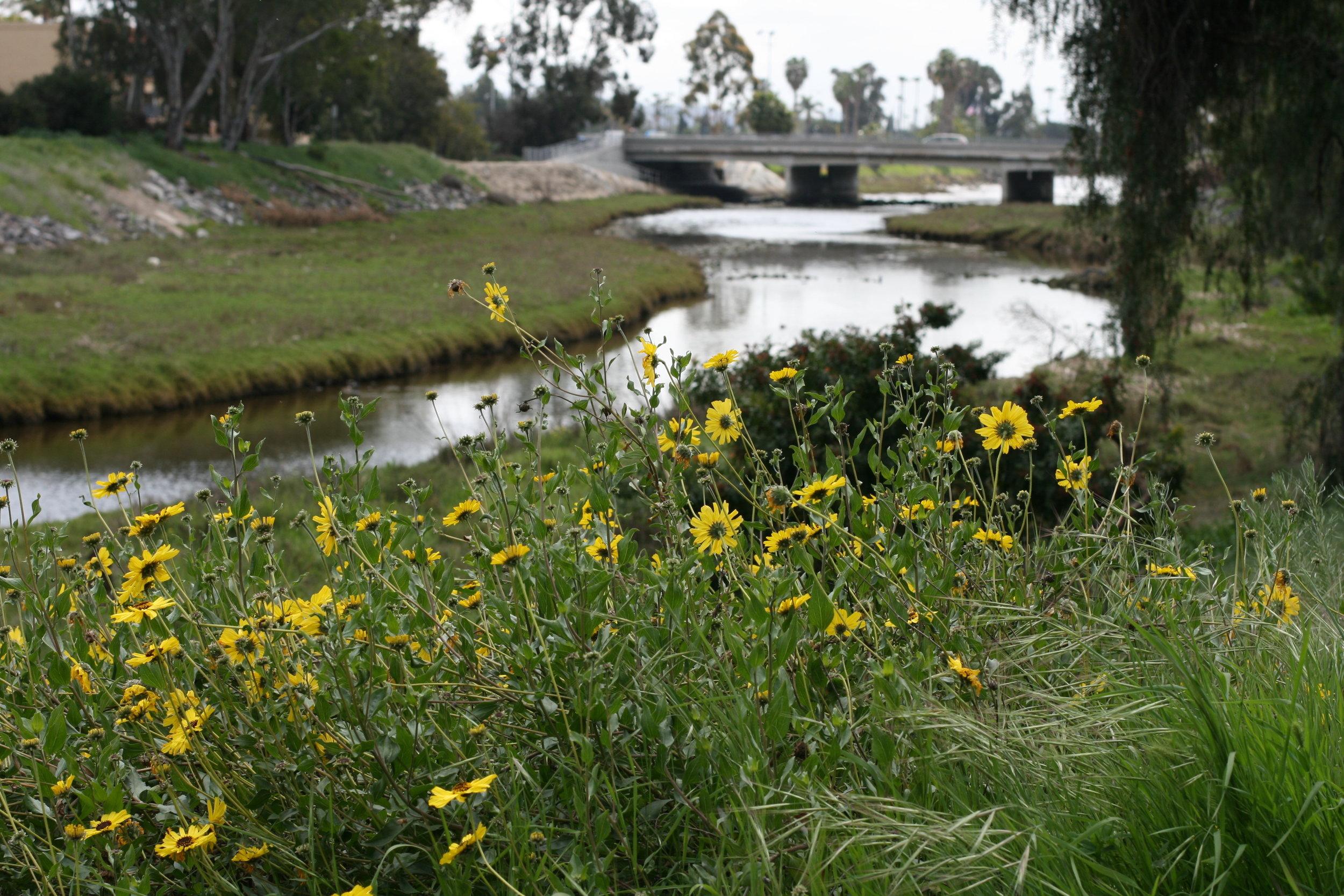 Rose Creek Watershed.jpg