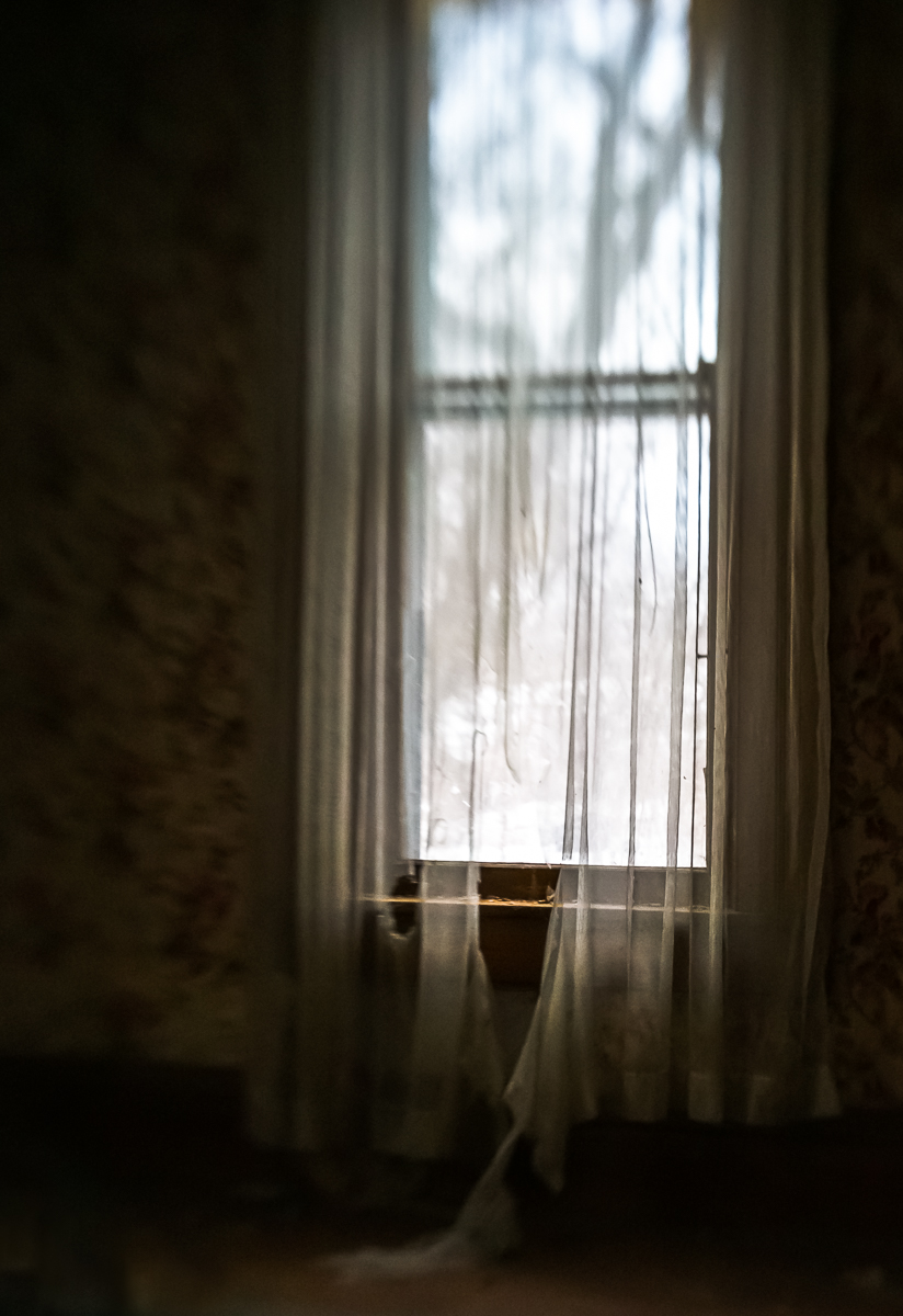The late afternoon golden light was perfect, especially against these torn and gauzy curtains.