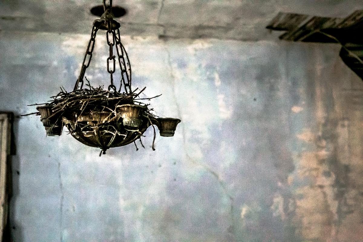 nest light.jpg
