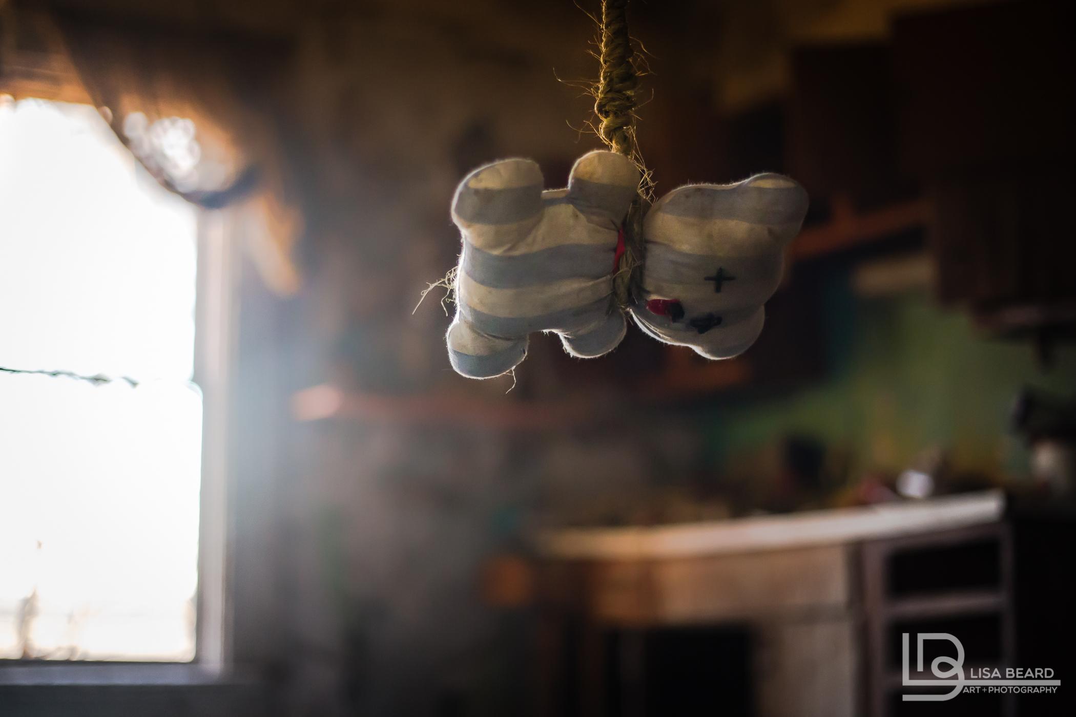 hanging bear-2.jpg