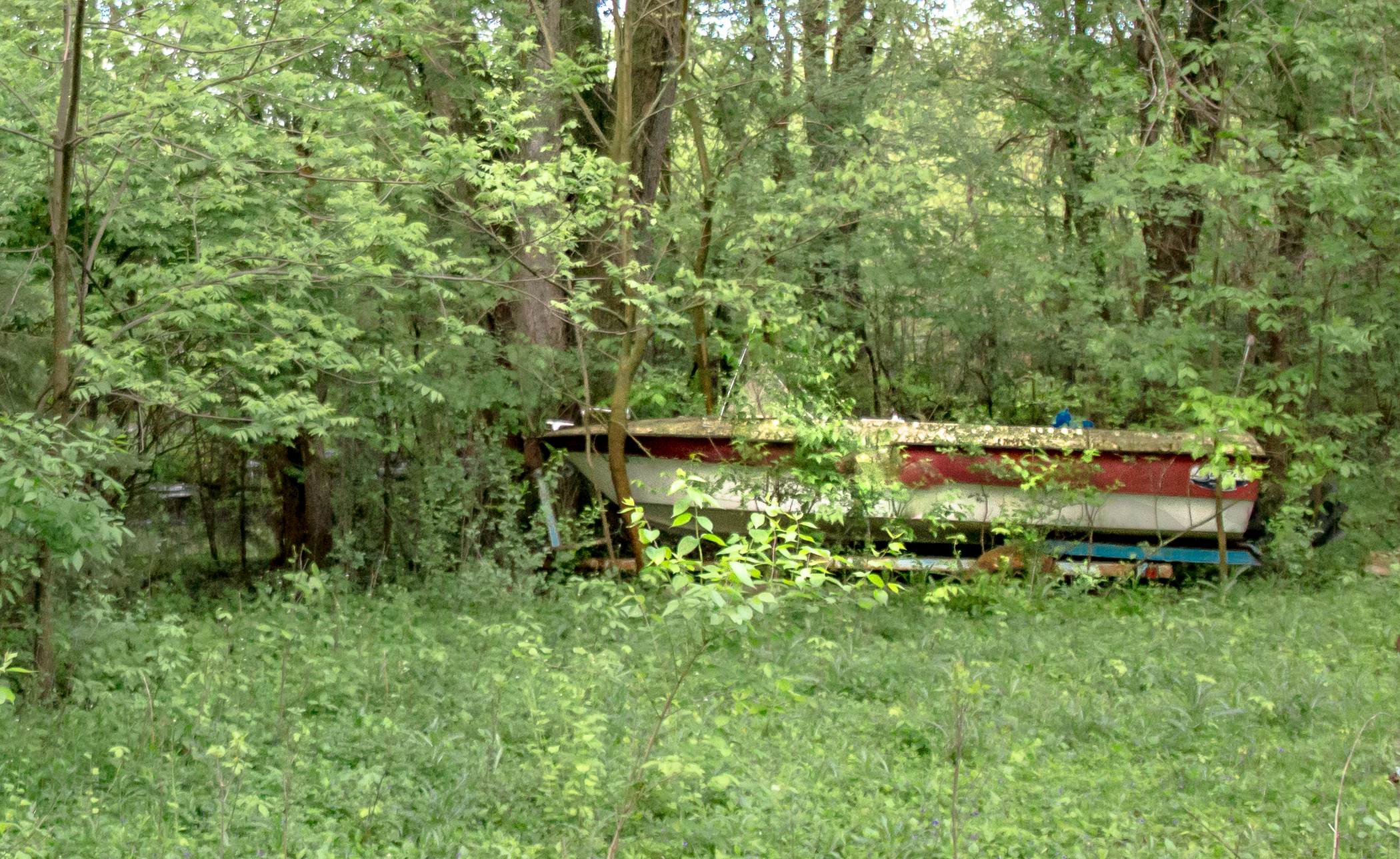 Boats. Everywhere. Walk up the gravel driveway: boat. Go a little bit more: 2 more boats.