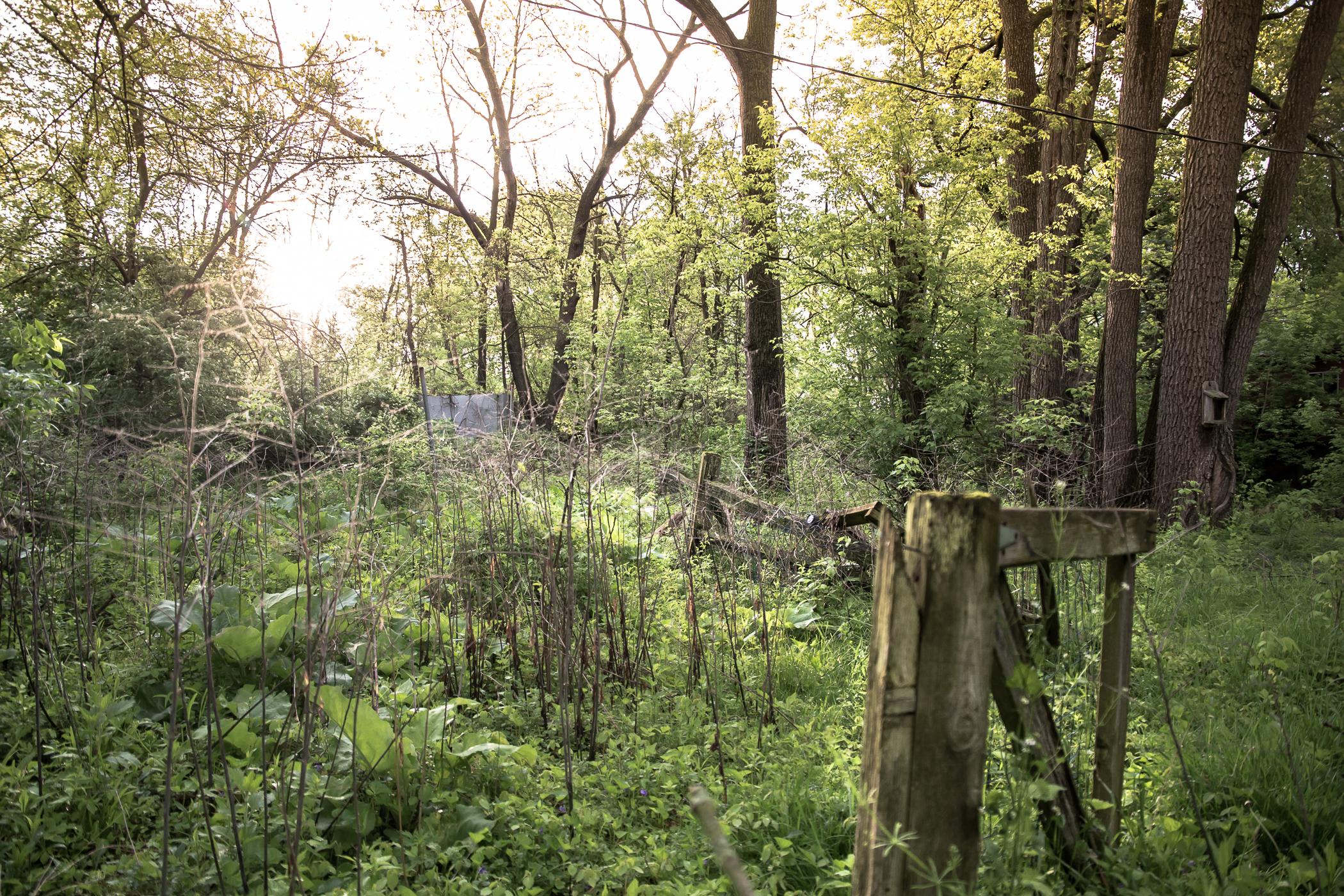 Beautiful land, broken fence, bomb shelter.