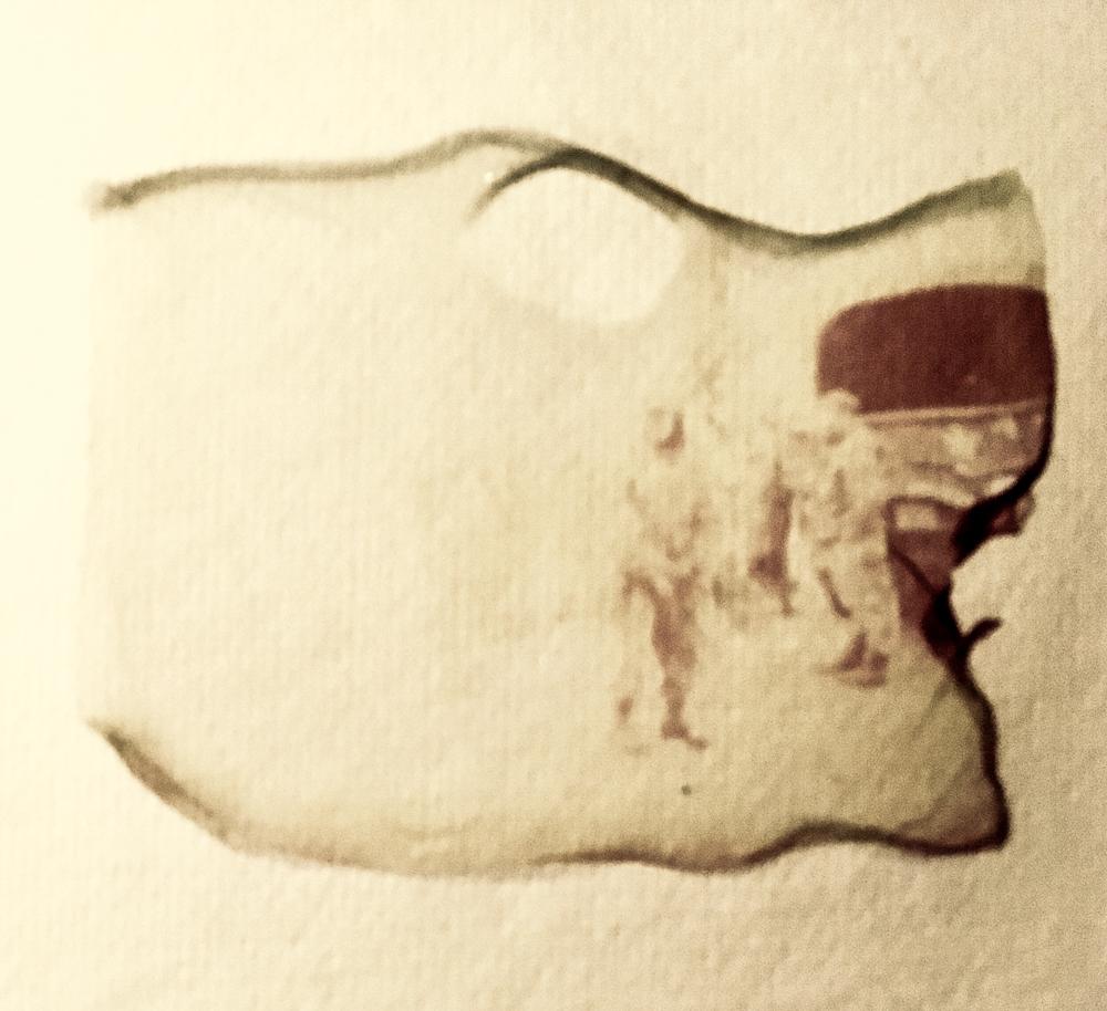 pos emulsion on canvas papr.jpg