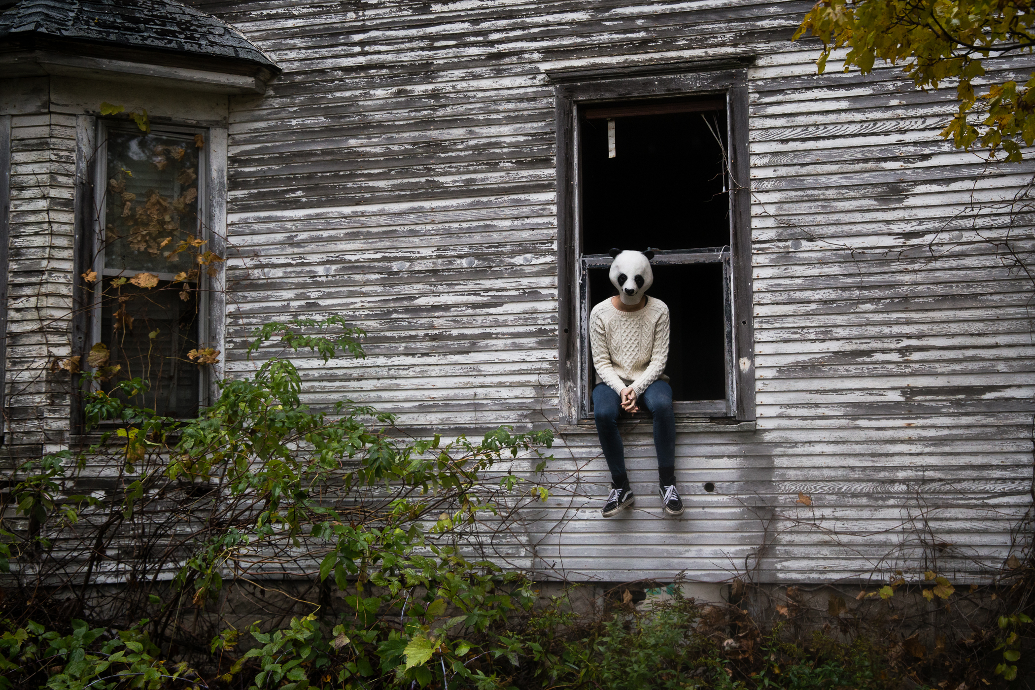 """Windowsill"" | The Animal House | 11""x 14"" | Photography"