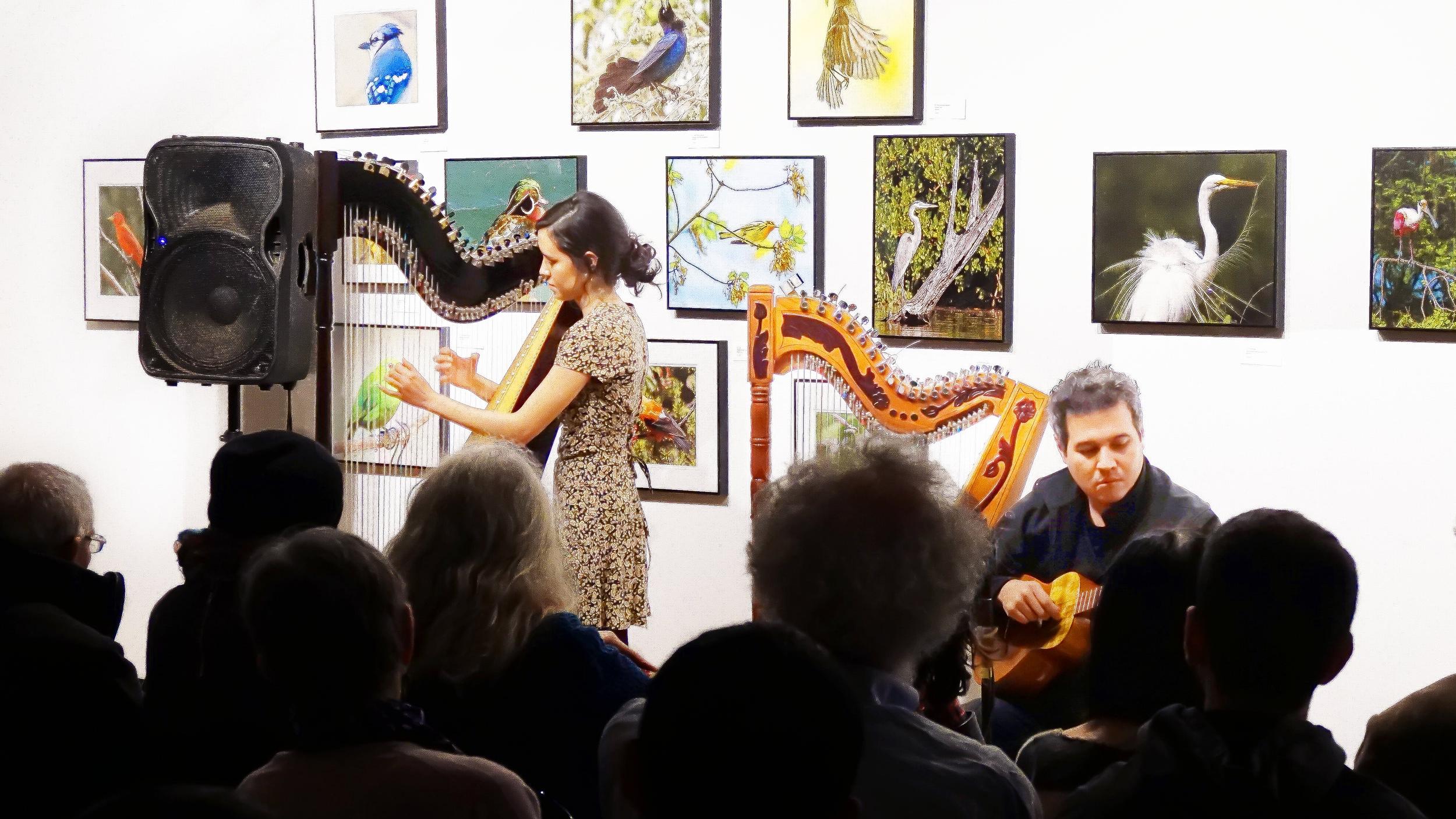 Female and Male Harpist HD.jpg