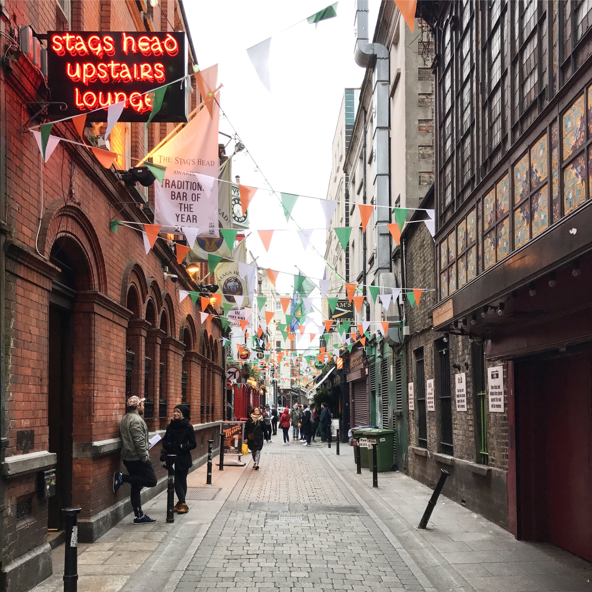 The Stag's Head  on Dame Lane is a traditional Irish pub with live music