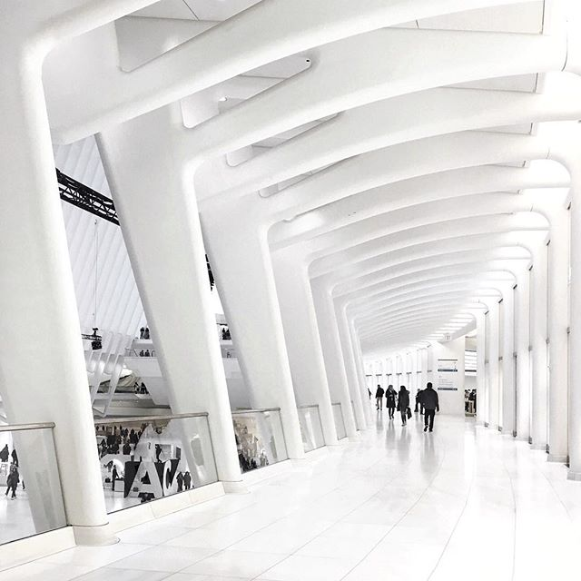 One day, you'll be able to catch a train to Westworld here! 🚅🐴 #calatrava #delos #WTCOculus #nyc #westfieldwtc