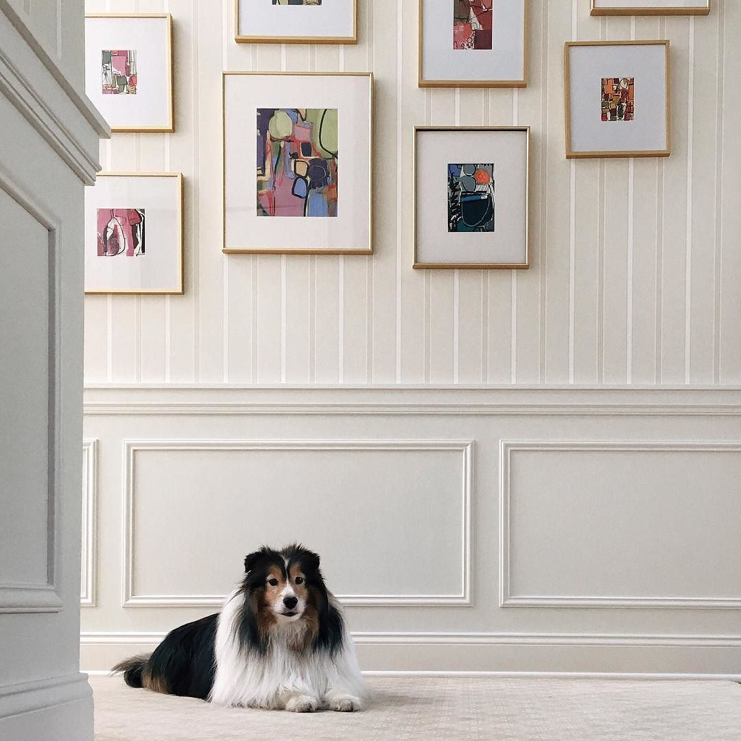My_doggie_Jacob_modeling_in_front_of_my__cdiannezweig_s_new_gallery_wall.____avonct__sheltie.jpg