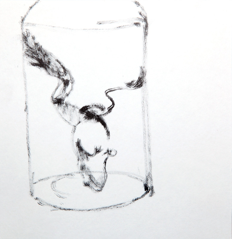 a frog in a jar