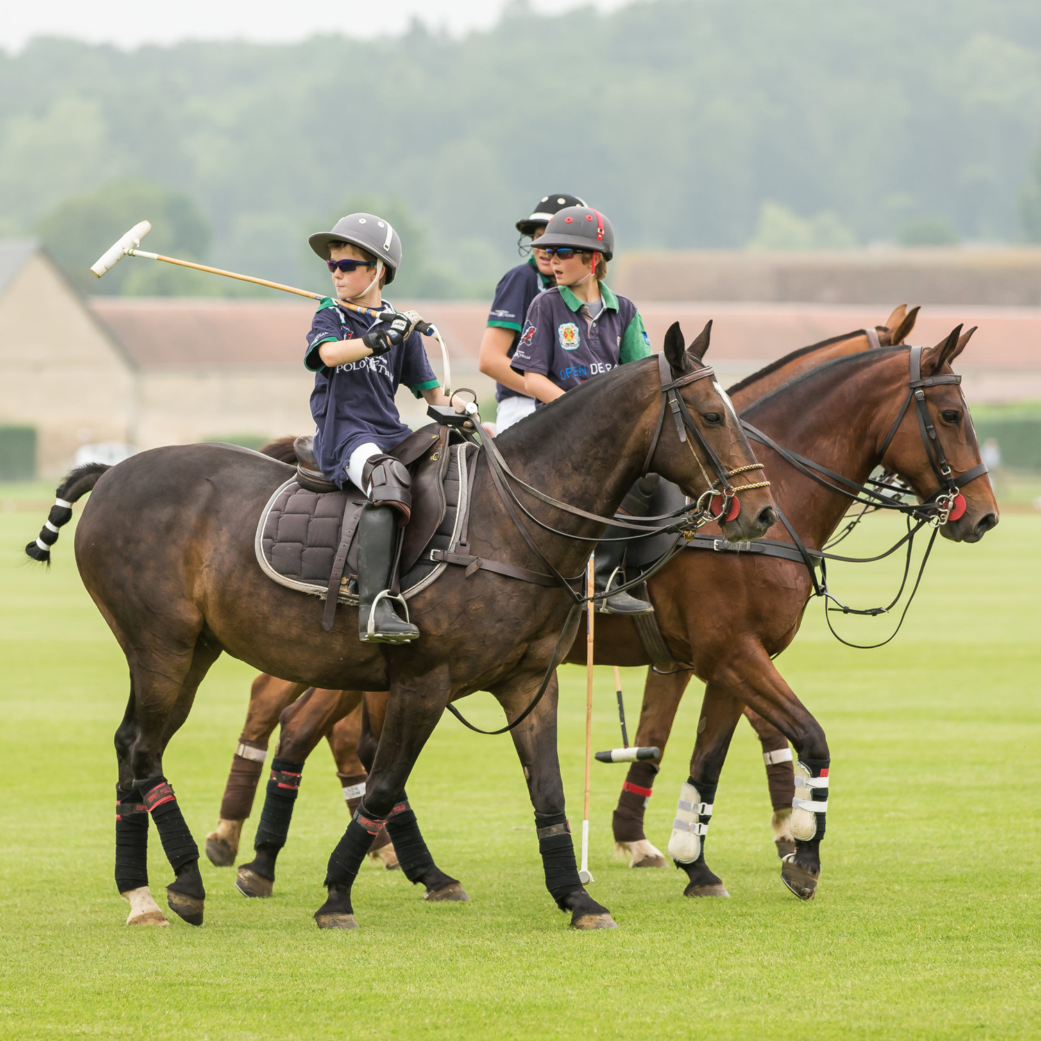 Polo Club du Domaine de Chantilly Poney Club