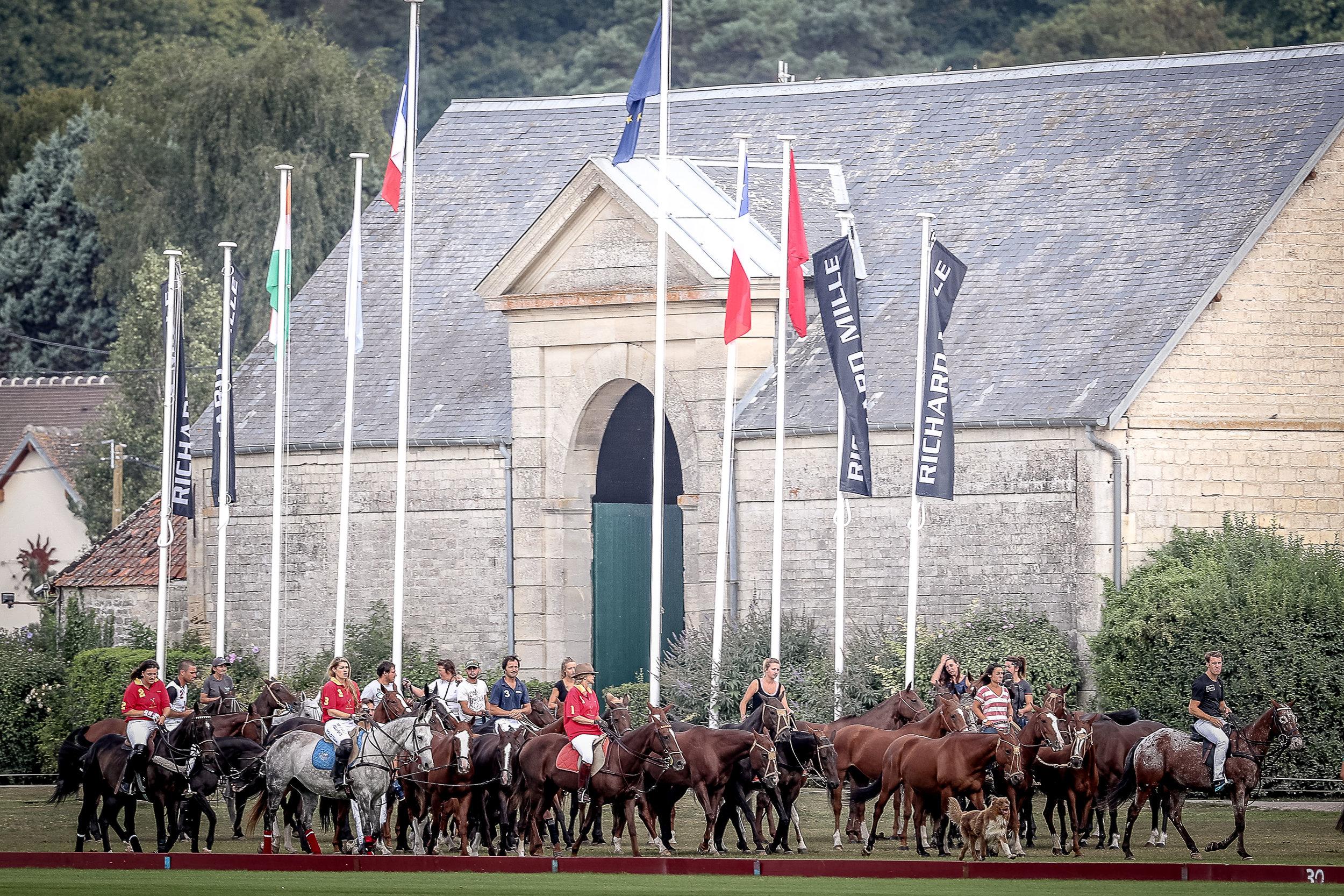 Les chevaux à l'entrainement au Polo Club du Domaine de Chantilly Horses on training at Chantilly Polo Club