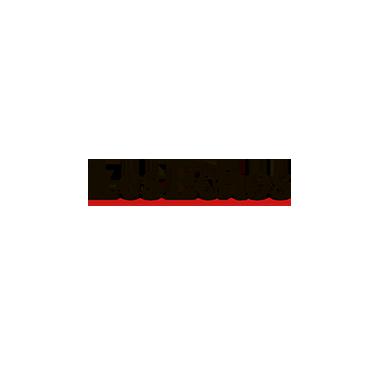 Les-Echos.png