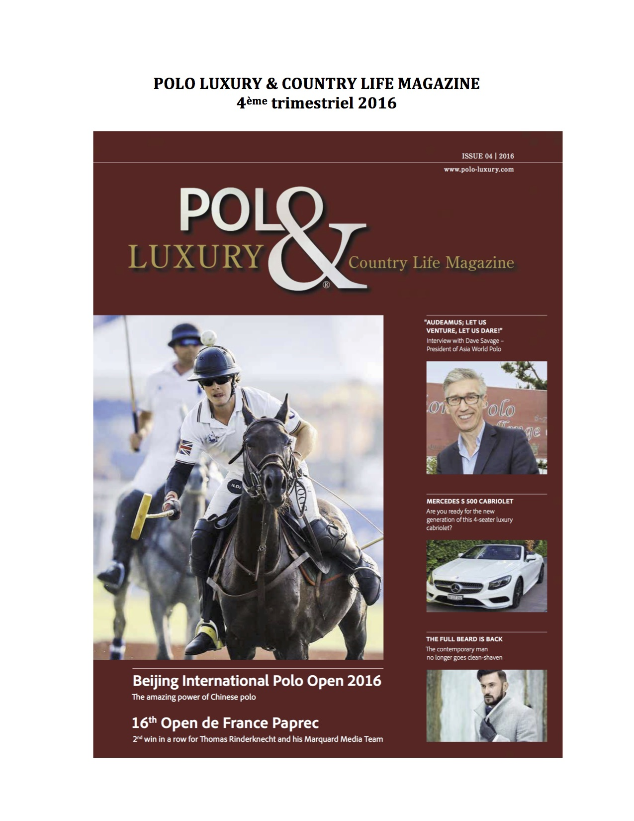 Polo Luxury4.jpg