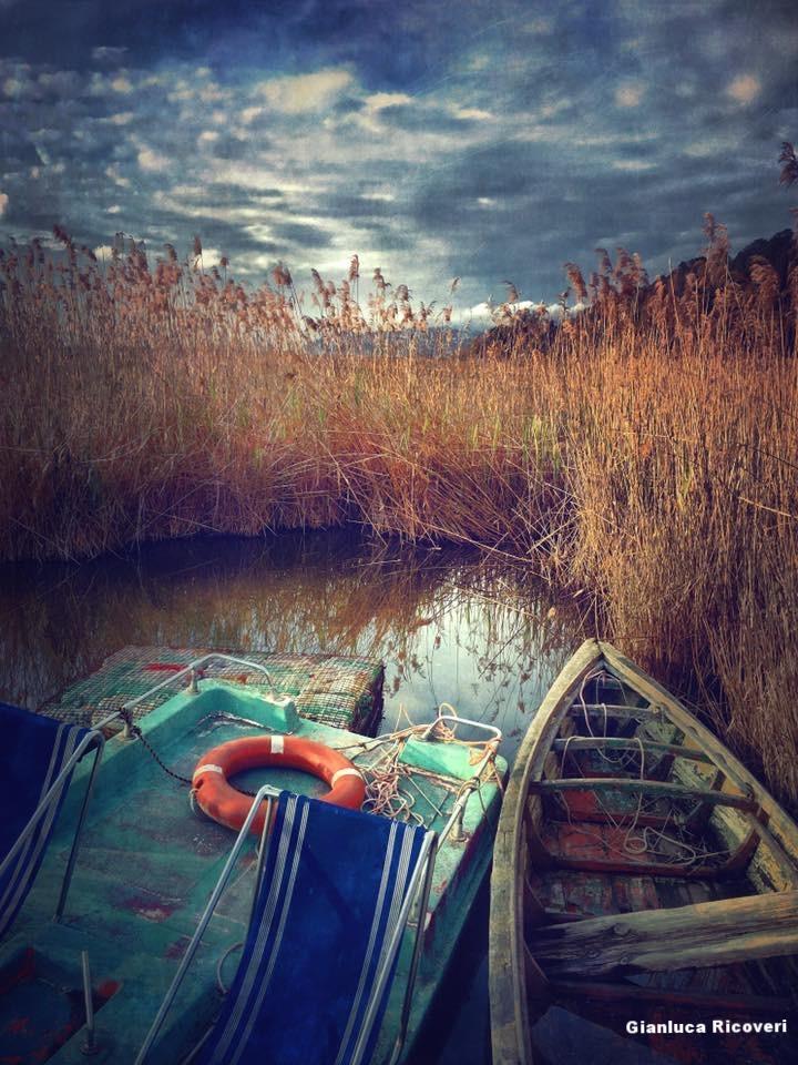 Landscape 1077 boats