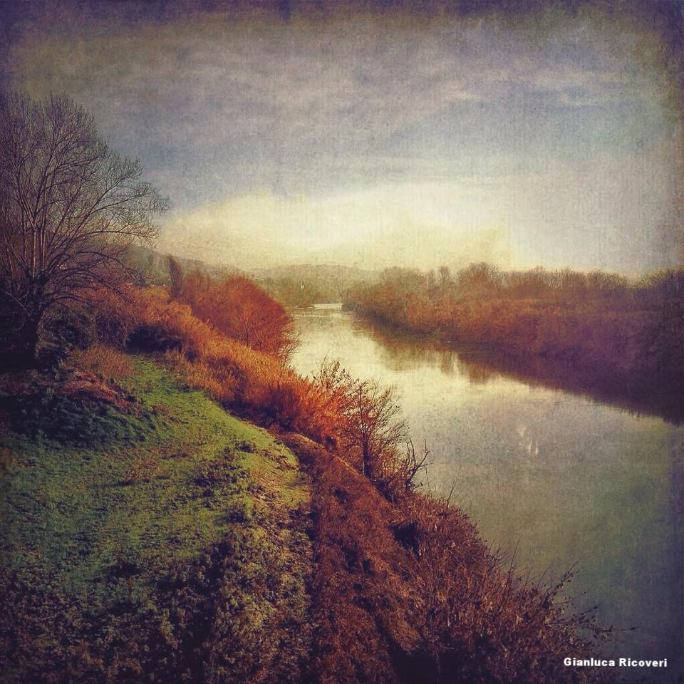 Landscape 861 River Arno