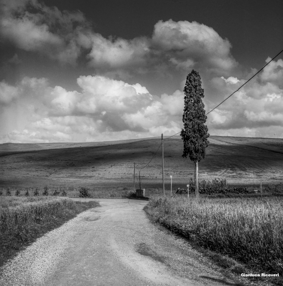 Tuscany's Hills  analogical view # 4