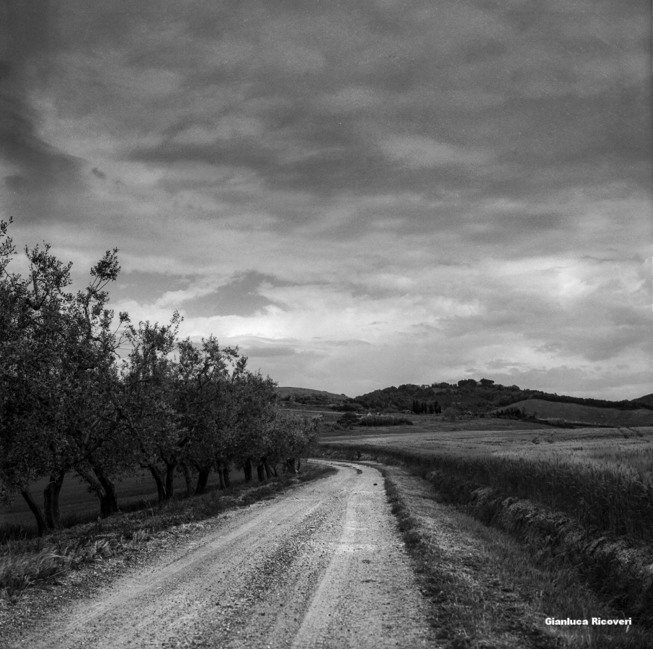 Tuscany's Hills  analogical view # 5