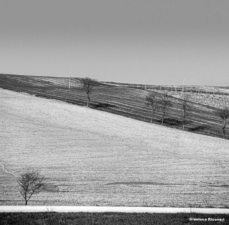 Tuscany's Hills  analogical view # 12