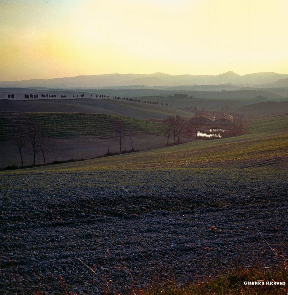 Tuscany's hills in Colours # 4