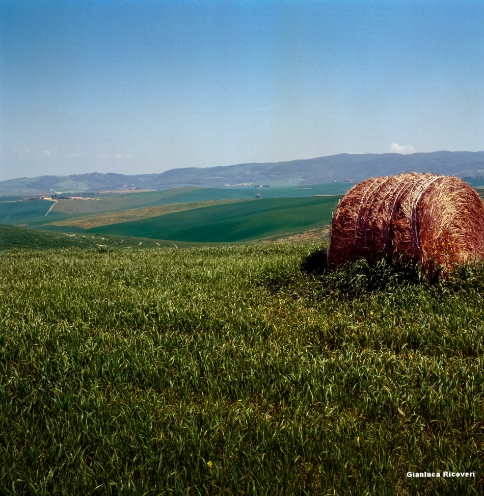Tuscany's hills in Colours # 7