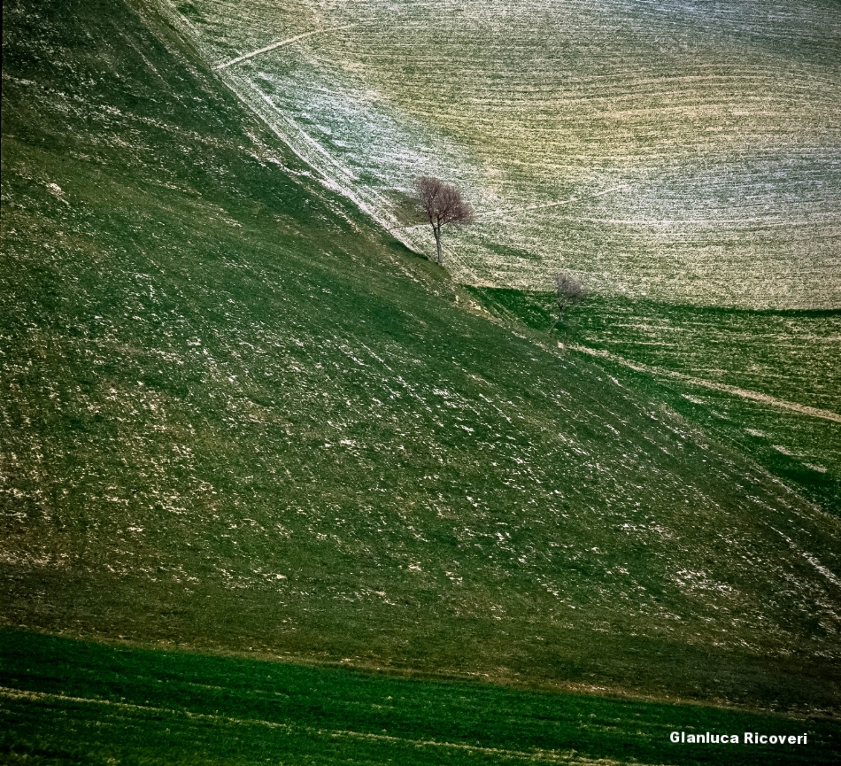 Tuscany's hills in Colours # 9