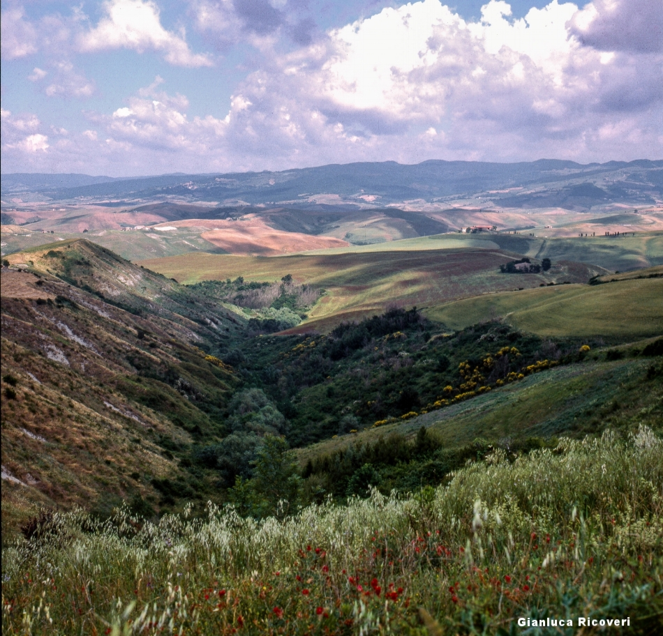 Tuscany's hills in Colours # 13