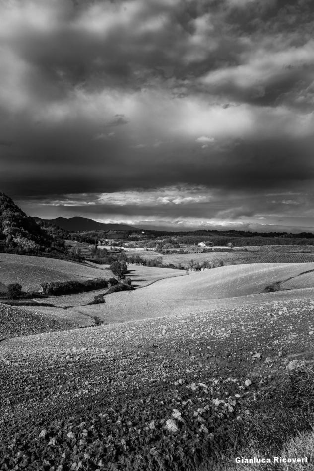 Tuscany's hills in B&W # 13