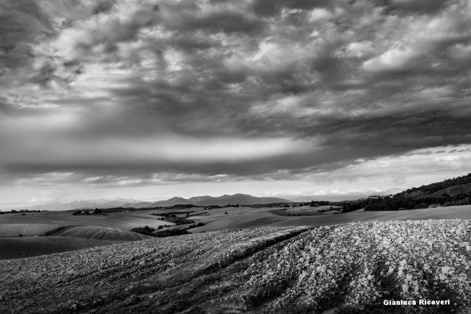 Tuscany's hills in B&W # 19